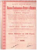 Ancienne Action - Anciens Etablissements Beroff & Horinek - Filature Et Tissage De Laine à Sofia - Titre De 1927 - Industrie