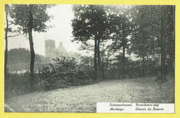 * Scherpenheuvel Zichem - Montaigu (Vlaams Brabant) * (D. Stalmans Adriaens - Legia) Rozenkrans Weg, Chemin Du Rosaire - Scherpenheuvel-Zichem