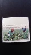 Bophuthatswana 1979 Coton Cotton Yvert 52 ** MNH - Bophuthatswana