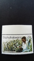 Bophuthatswana 1979 Maïs Corn Yvert 53 ** MNH - Bophuthatswana