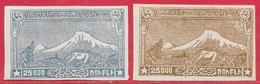 Arménie N°117 25000r Bleu-gris & N°118 25000r  Brun Clair 1921-22 * - Arménie