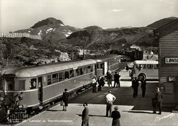 Norway Norge, LØNSDAL, Nordland, Railway Station, Train (1950s) RPPC Postcard - Norway