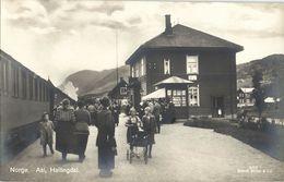 Norway Norge, AAL ÅL, Hallingdal, Railway Station (1928) RPPC Postcard - Norway