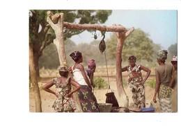 Cpm - Sine Saloum - Femmes Sérères Et Peuhls - Travail Puits Eau - Robe Tissus Dessin Oiseau Fer à Cheval - Gambie