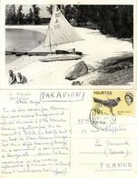 Mauritius, Le Chaland, Beach With Sailing Boat (1965) RPPC Postcard - Mauritius