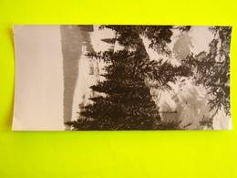 STAINACRE..CARTE POSTALE ORIGINALE..10X21cms - Pontarlier