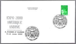 Expo AMERICA ANDINA - ARTE PRECOLOMBINO -  PRE-COLUMBIAN ART. S.Pierre D'Oleron 2000 - American Indians