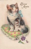 Chats : Chaton Sur Un Coussin Fleuri : Bonne Année - Cats