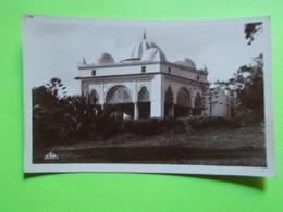 Carte Postale - TUNISIE - Tunis - Le Belvedere - La Kouba (2423) - Tunesien