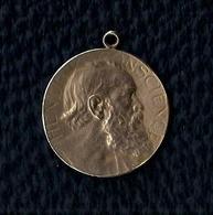 MÉDAILLE - HENDRIK CONSCIENCE - 1812- 1912 - CENTENAIRE.(Hij Leerde Zijn Volk Lezen) - Unclassified
