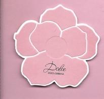DOLCE & GABBANA    * USA * - Perfume Cards