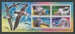 TAAF 2010 Bloc  N° 24 ** Neuf MNH Superbe C 8,80 € Animaux Oiseaux Birds Albatros Animals Faune - Blocs-feuillets