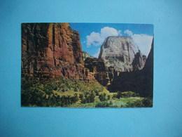 GREAT WHITE THRONE ZION NATIONAL PARK  -  Utah  -  Etats Unis - Zion