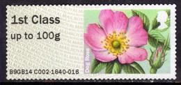 GB 2014 QE2 1st To 100 Gms Post & Go British Flora Dog Rose Unused No Gum  ( J407 ) - Great Britain