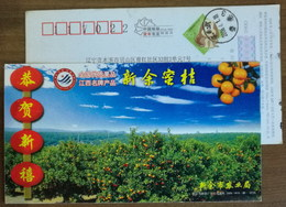 National High Quality Fruit,jiangxi Top Brand Sweet Orange,China 2006 Xinyu Agricultural Bureau Advert Pre-stamped Card - Frutas
