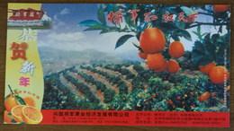 Jiangjunhong Navel Orange,terraced Field Fruit Garden,CN 06 Xingguo Fruit Advert Pre-stamped Card,specimen Overprint - Frutas