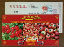 Tomato,China 2007 Sanhuang Town 20 Thousand Acres Of Pollution-free Vegetable Production Base Advert Pre-stamped Card - Vegetables