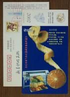 Sweet Orange,grape,apple,banana,sweet Melon,Painted Drawing Machine,CN02 Telecom Advertisment Company Pre-stamped Card - Frutas