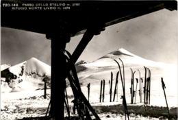 Livrio Hütte Am Stilfserjoch (720-149) * 11. 7. 1966 - Italien