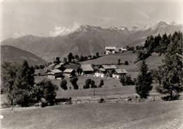 Pensione Rist. Caffè Maria - Avelengo Pr. Merano - Hafling Bei Meran (102-34)  * 4. 5. 1961 - Italien