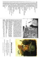 DOC201 - OPUSCOLO BROCHURE MOSTRA DI QUADRI 1974 IN SALISBURGO - ALBERTO SUSAT PITTORE DI RIVA DEL GARDA - Tourism Brochures
