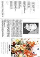 DOC202 - OPUSCOLO BROCHURE MOSTRA DI QUADRI 1977 IN SALISBURGO - ALBERTO SUSAT PITTORE DI RIVA DEL GARDA - Tourism Brochures