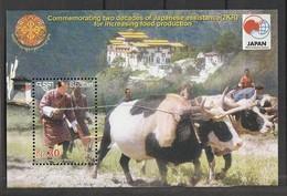 Bhutan 2005 1412 S/SJapanese Assistance Sheet Of 1NH - Bhután