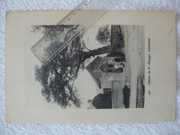 Arbres Remarquables – Andenne Coutisse - Années 20 - Rare - Andenne
