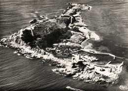 CPSM  Grand Format L'Ile De BANDOR (Var) Vue Generale Aérienne De L'Ile Propriété Ricard RV - Bandol