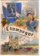 Carte Maximum Avec N°388 Champagne Oblit Expo Philatélique Reims 1942  Cote Yvert : A5  70E - Cartes-Maximum