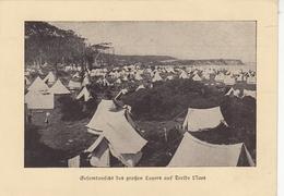 Trelde Naes, Großes Lager Gl1923 #F5794 - Dänemark
