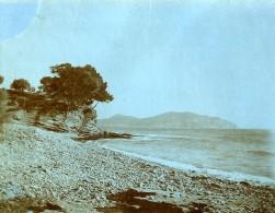 France La Ciotat Scene De Bord De Mer Le Gros Nez Ancienne Photo 1900 - Places