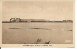SALIN-DE-GIRAUD - VUE DES SALINS - Non Classés