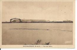 SALIN-DE-GIRAUD - VUE DES SALINS - Frankrijk