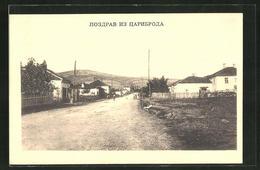 AK Zaribrod, Strassenpartie Mit Wohnhäusern - Serbie