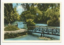 Curia * Pitoresco Lago - Aveiro