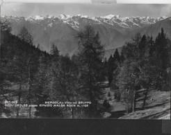 DALLA MENDOLA VISTA SULL'ORTLES - FORMATO PICCOLO - VIAGGIATA 1957 DA MENDOLA(TRENTO) - Alpinisme