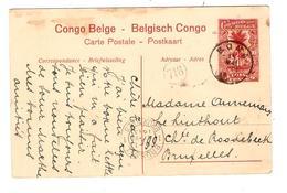 PR6017/ Belgisch Congo Belge Entier CP 10c Rouge Palmier Vue 11 C.Boma 1913 V.BXL C.d'arrivée - Entiers Postaux
