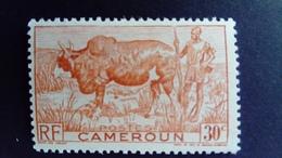 Cameroun Cameroon 1946 Animal Boeuf Buffalo Yvert 277 ** MNH - Ungebraucht