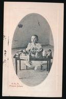 H.K.H.  PRINSES JULIANA - Koninklijke Families