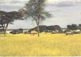 BOTSWANA - UKWI Village - CPM Grand Format - Afrique Noire - Black Africa - Togo