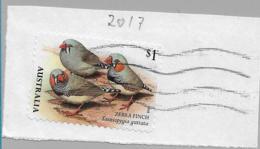 Australien 052 / Zebra Finken 2017 (Vogel, Bird) - 2010-... Elizabeth II