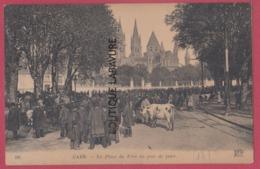 14 - CAEN-----La Place Du Parc Un Jour De Foire---animé - Caen