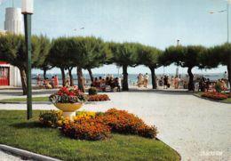 33-ANDERNOS-N°C-4325-B/0395 - Andernos-les-Bains
