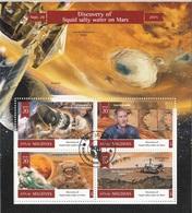 Maldives 2015 Mi. 6170 Discovery Of Liquid Salty Water On Mars Marte  CTO Perf. - Maldive (1965-...)