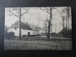 Kalmthout / Heide, De Witte Hoeve - Kalmthout