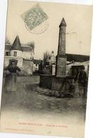 77 SAINT-SOUPPLETS - Place De La Fontaine - Animée : Paysanne Avec Sa Hotte - Autres Communes