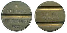 01527 GETTONE TOKEN JETON TELEFONO TELEPHON TOKEN ENTEL LARGA DISTANCIA 7903 - Italy