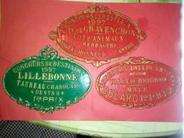 TROIS PLAQUE De CONCOURS De BESTIAUX VILLE BRIONNE, NOTRE DAME DE GRAVENCHON Et LILLEBONNE - Ironwork