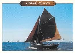 """44 - PIRIAC SUR MER : """" Le Grand Norven """" Bateau De La Ville De Piriac - Voiliers"""